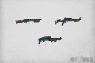 Shotguns (10)