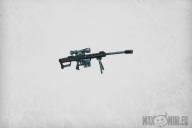 Sniper Rifles (5)